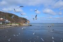 Dlaczego warto inwestować w nowe mieszkania na sprzedaż w Gdyni?